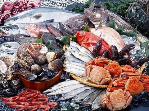 島根直送の海産物など厳選した食材